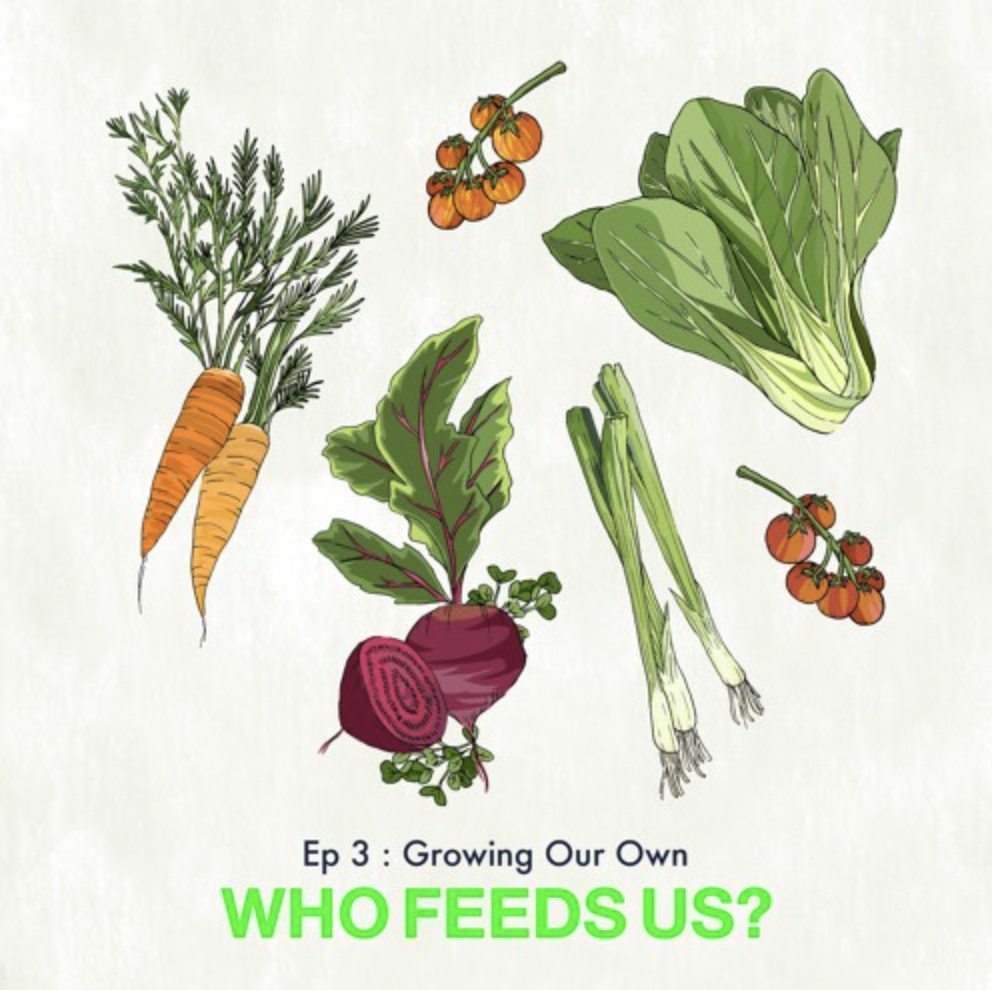 Who Feds Us? Episode 3: Growing our own
