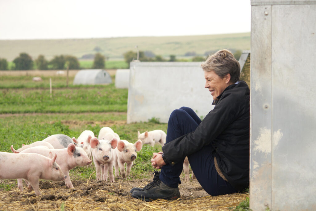 Free range pigs with farmer Helen Browning